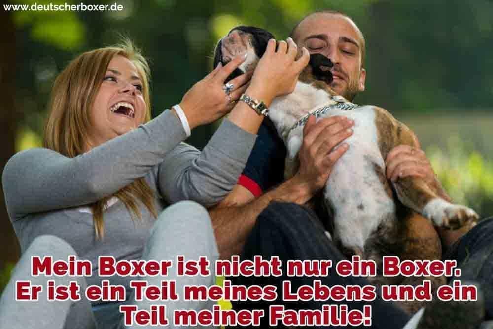 Eine Familie umarmt ihren Boxer