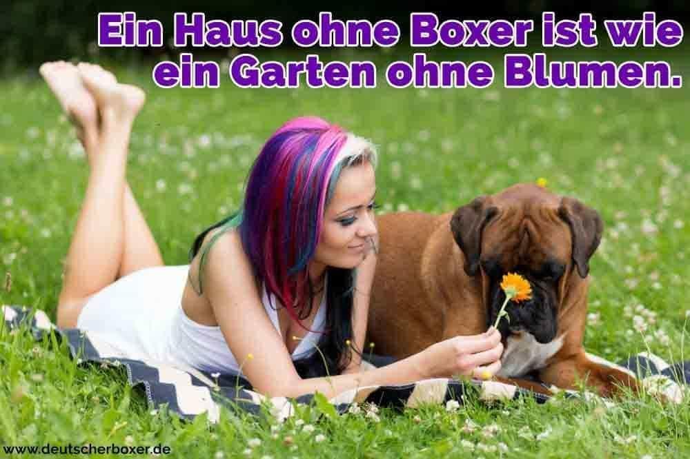 Eine Frau im Park mit Ihrem Boxer liegend